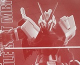 1/100 MG MBF-P02 Exclusive Gundam Astray Red Frame
