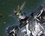 1/144 HGUC Narrative Gundam A-Packs