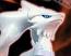 Reshiram 13 Pokemon Plamo