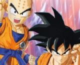 Figure-rise Standard Son Goku & Krillin DX Set